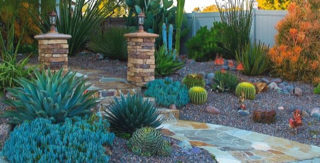 Submit Your WaterSmart Landscape Contest Application by April 30 for a Chance to Win a $250 Gift Certificate to a Nursery
